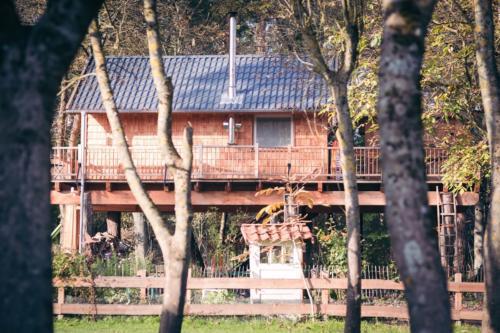 baumhaus BaHu Mützingen Herbst-6